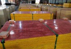 铁红面建筑红板供应