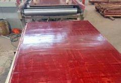 桉木松木建筑红模板